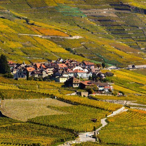 hands-on-travel-deaf-tours-switzerland-lavaux-wine